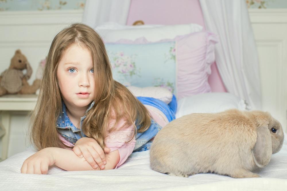 konijnen allergie
